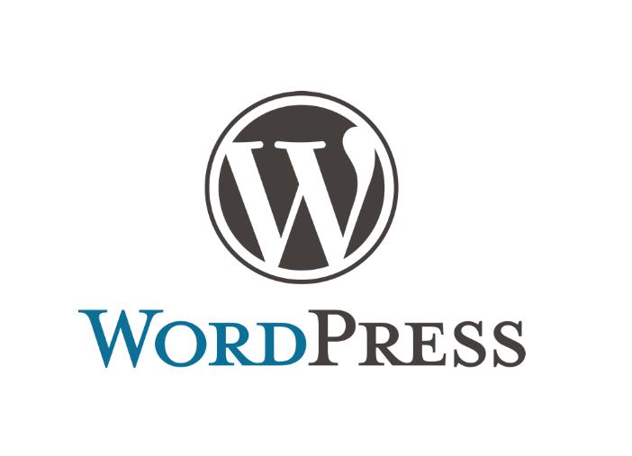 WordPress外贸网站免费视频托管服务